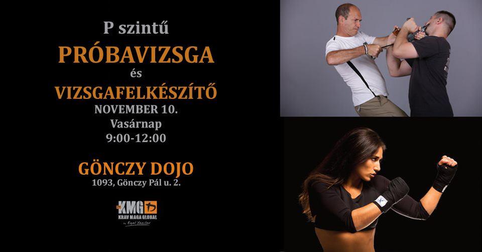 P szintű próbavizsga és vizsgafelkészítő – November 10. (Vasárnap) – Budapest